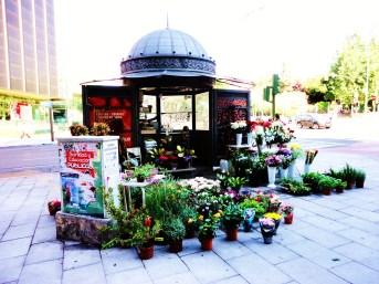 Madrid Florist